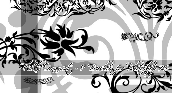 9 Floral Ornament Brushes by BrixStock