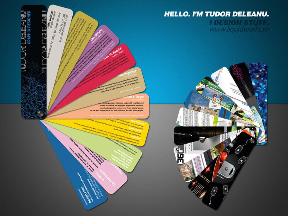 CV Tudor Deleanu by ~iTudor