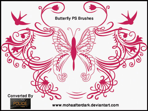Download Cool Butterfly Ornament Brushes for Photoshop by mohaafterdark