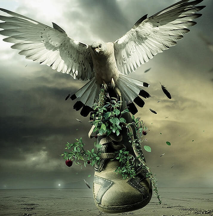 Featured Manipulation Adidas and Nike Shoes Part-1
