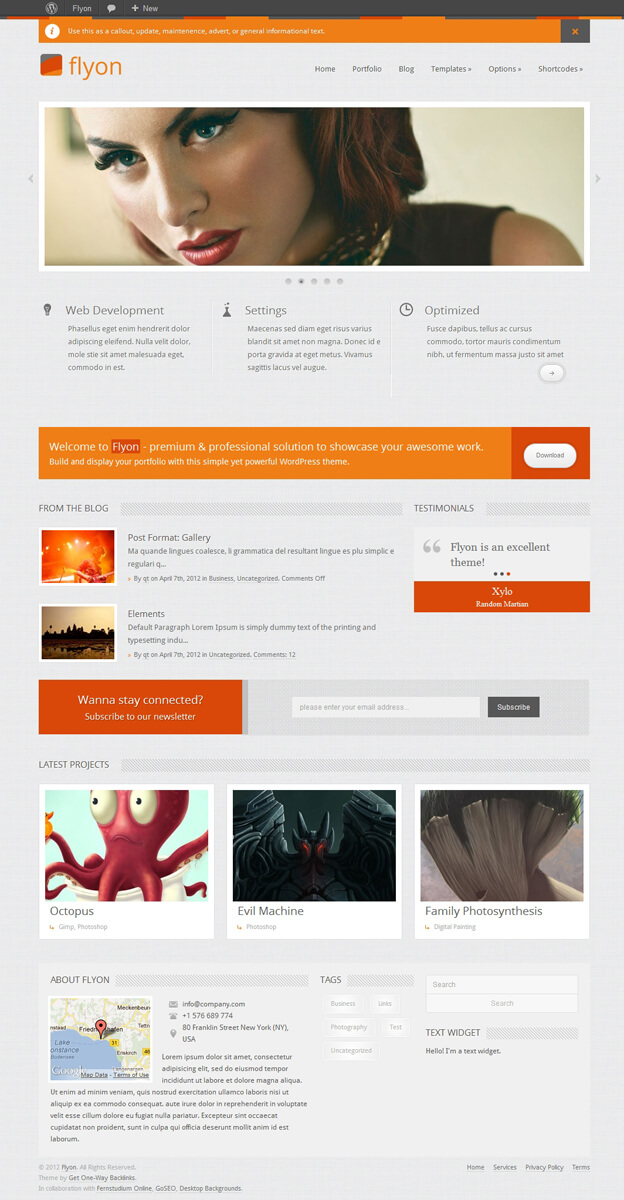 Flyon Responsive WordPress Theme by QuadThemes