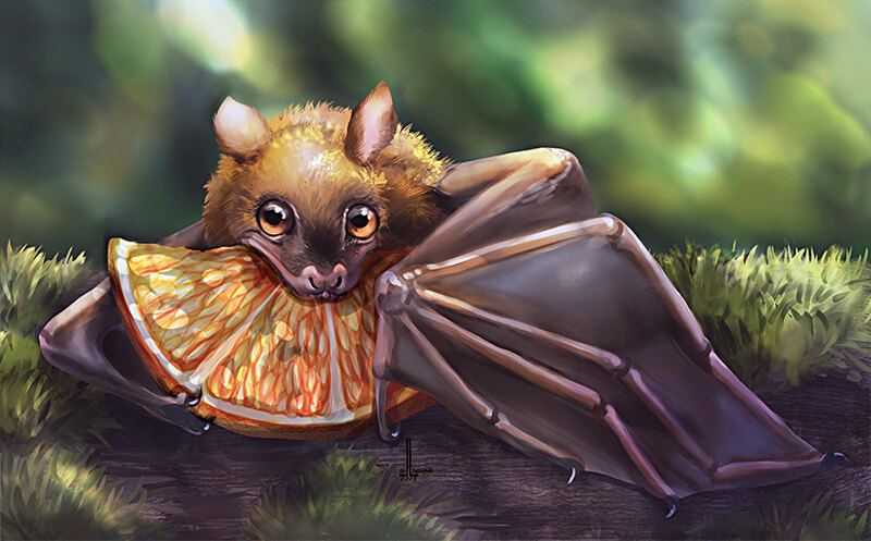 Fruit bat by DesigningLua