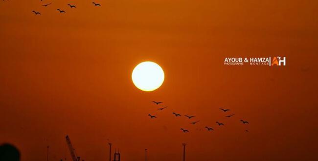 Ghurrob ul Shams(Sunset) by Hamza Larbi