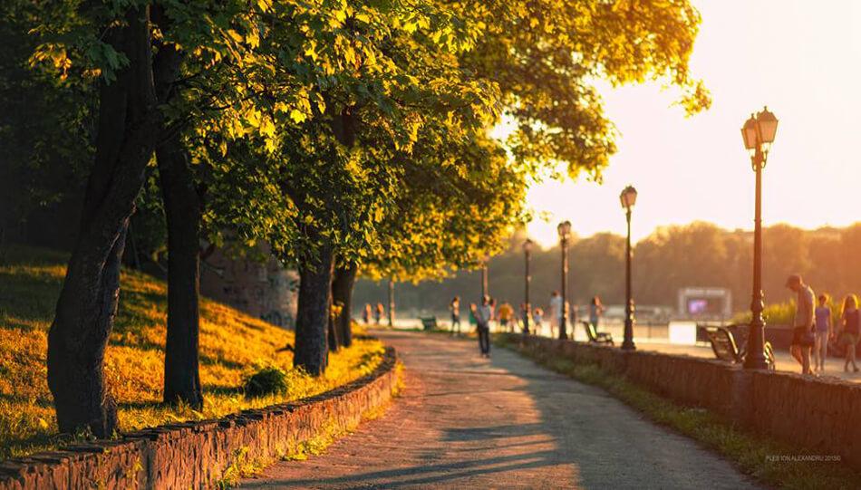 Landscape by Ion Ples Alexandru