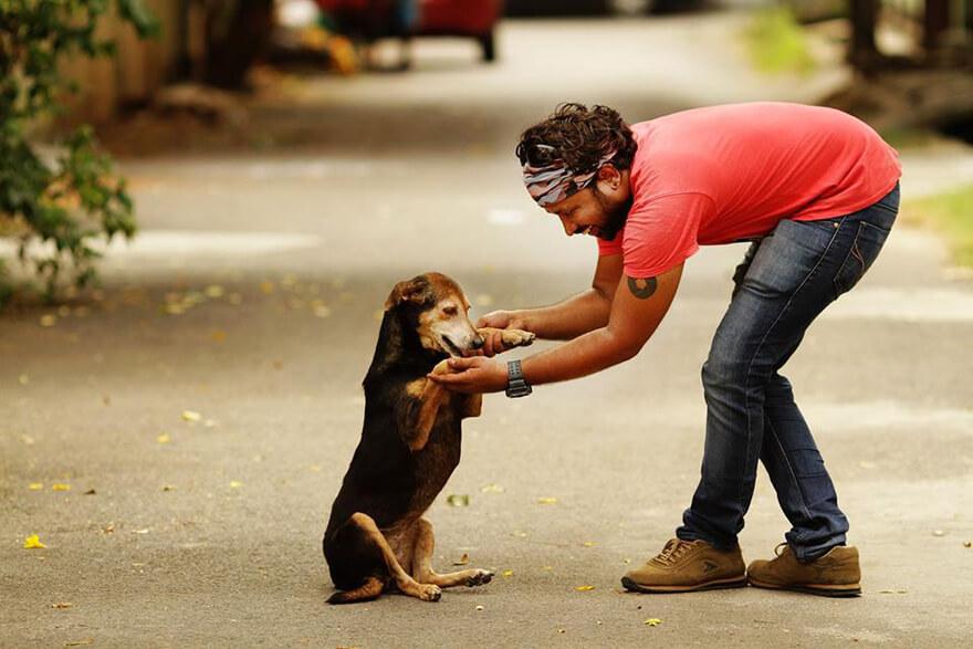 Love the animals by Prabhu Kalidas