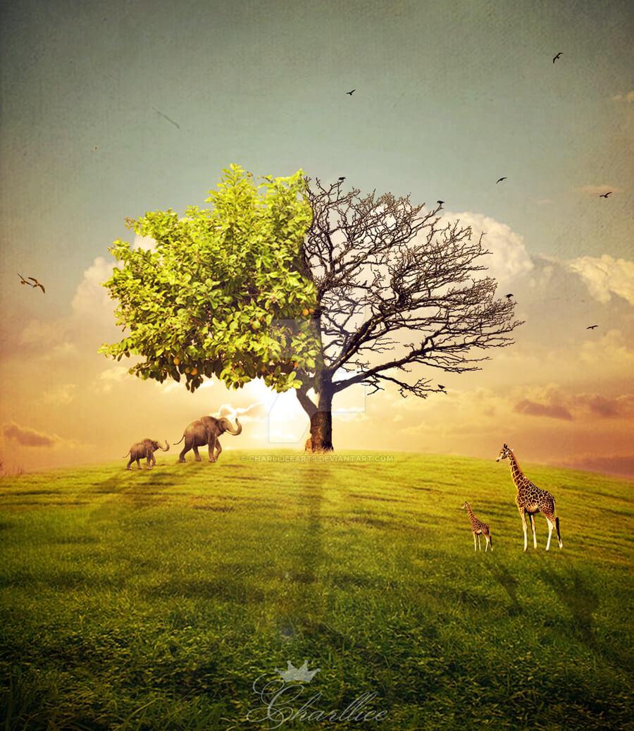 Preserve nature.