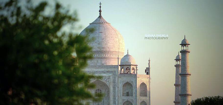 Taj Mahal by Shivaa Shukla