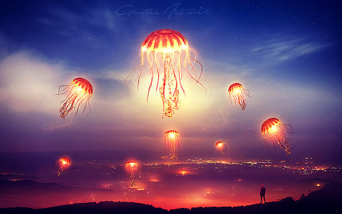 The valley of the jellyfish by CharllieeArts
