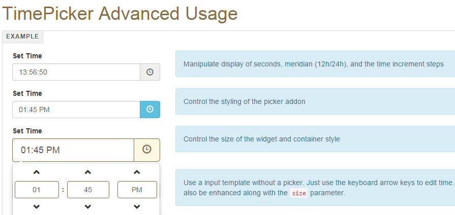 TimePicker Widget TimePicker.php