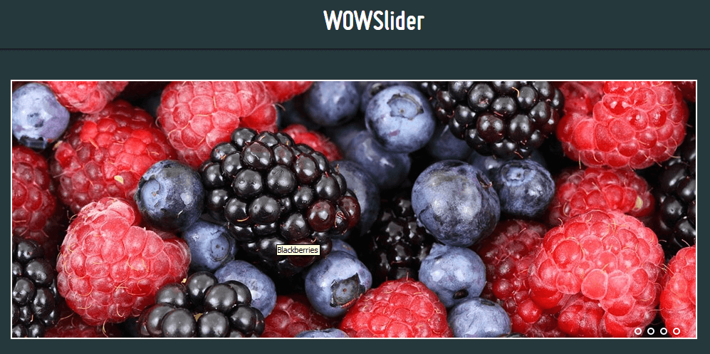 WOWSlider - Pure CSS Slider Example