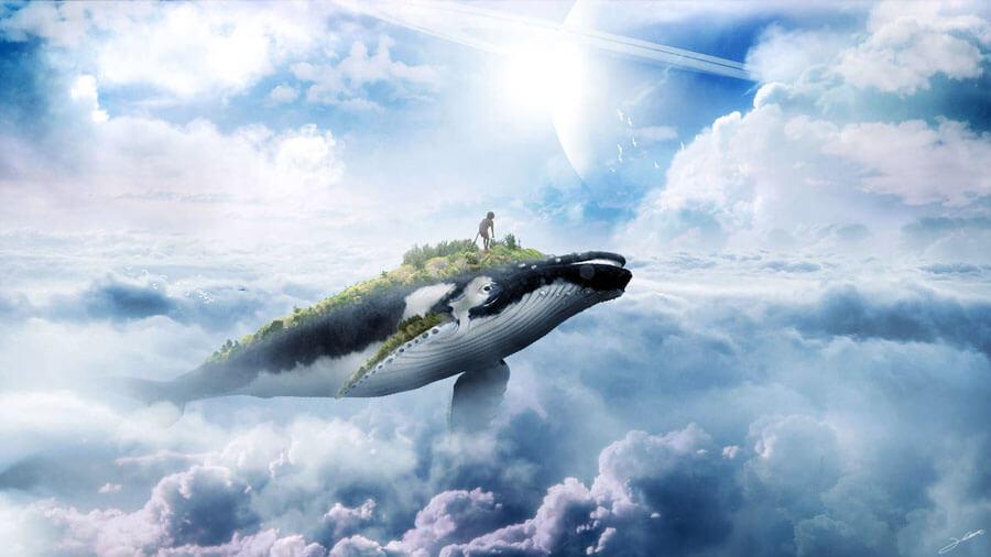 Whale by FantasyArt0102