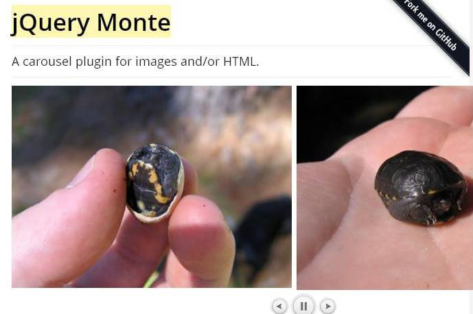 jQuery-Monte